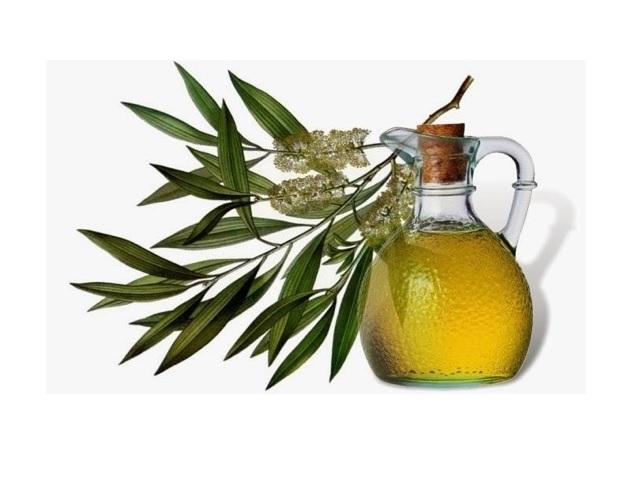 Çay ağacı yağı faydaları ile çay ağacı yağının saç büyümesi ve bakımına etkileri yazımızda.